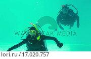 Купить «Couple in scuba gear swimming», видеоролик № 17020757, снято 5 апреля 2020 г. (c) Wavebreak Media / Фотобанк Лори