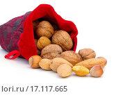 Купить «nuts in sack», фото № 17117665, снято 8 июля 2020 г. (c) easy Fotostock / Фотобанк Лори