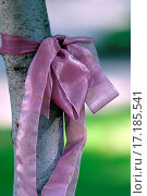 Купить «Pink tape», фото № 17185541, снято 19 августа 2018 г. (c) easy Fotostock / Фотобанк Лори