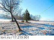Купить «landscape», фото № 17219901, снято 21 марта 2018 г. (c) easy Fotostock / Фотобанк Лори