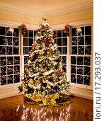 Купить «Beautiful xmas tree at night», фото № 17293037, снято 24 января 2019 г. (c) easy Fotostock / Фотобанк Лори