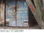 Купить «Gates of old garage», фото № 17320041, снято 20 февраля 2020 г. (c) easy Fotostock / Фотобанк Лори