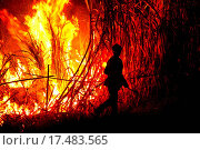 Купить «Big fire on the farmland», фото № 17483565, снято 17 августа 2019 г. (c) easy Fotostock / Фотобанк Лори