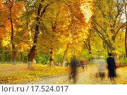 Купить «Strolling in a park», фото № 17524017, снято 19 сентября 2018 г. (c) PantherMedia / Фотобанк Лори