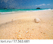 Купить «Falling sand», фото № 17563681, снято 25 марта 2019 г. (c) easy Fotostock / Фотобанк Лори