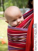Купить «little cute girl six month old sitting in sling. Summer time», фото № 17623305, снято 15 ноября 2019 г. (c) easy Fotostock / Фотобанк Лори