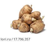 Купить «Turnip-rooted chervil on white background», фото № 17796357, снято 20 февраля 2019 г. (c) easy Fotostock / Фотобанк Лори
