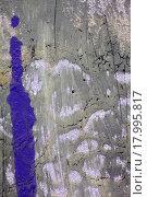 Купить «Фиолетовое пятно краски на картине», фото № 17995817, снято 12 ноября 2014 г. (c) Elizaveta Kharicheva / Фотобанк Лори