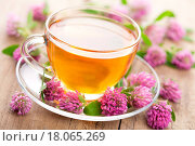 herbal tea and clover flowers. Стоковое фото, фотограф Olga Miltsova / easy Fotostock / Фотобанк Лори