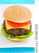Купить «Classic Hamburger with cheese tomato and salad», фото № 18080533, снято 22 апреля 2019 г. (c) easy Fotostock / Фотобанк Лори