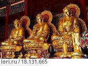 Купить «Three Buddhas in the Chinese temple of Thailand», фото № 18131665, снято 13 ноября 2018 г. (c) easy Fotostock / Фотобанк Лори
