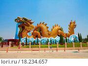 Купить «dragon china», фото № 18234657, снято 18 января 2019 г. (c) easy Fotostock / Фотобанк Лори