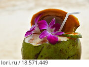 Купить «Fresh coconut milk juice decorated with flowers», фото № 18571449, снято 17 июля 2019 г. (c) PantherMedia / Фотобанк Лори