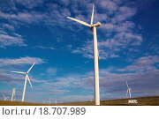 Купить «Wind farm», фото № 18707989, снято 21 августа 2019 г. (c) easy Fotostock / Фотобанк Лори