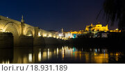 Roman bridge and Mosque-cathedral of Cordoba (2014 год). Стоковое фото, фотограф Яков Филимонов / Фотобанк Лори