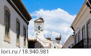 Гнёзда аистов на старой церкви в городе. Стоковое фото, фотограф Kateryna Kyselova / Фотобанк Лори