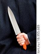 Купить «Knife in hand», фото № 18955689, снято 4 августа 2020 г. (c) easy Fotostock / Фотобанк Лори