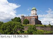 Купить «Замок и башня Святого Олафа. Выборг», фото № 18996361, снято 27 июня 2015 г. (c) Victoria Demidova / Фотобанк Лори