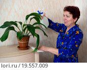 Пожилая женщина опрыскивает цветы из пульверизатора. Стоковое фото, фотограф Вячеслав Палес / Фотобанк Лори