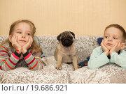 Щенок мопса и симпатичные дети смотрят телевизор. Стоковое фото, фотограф Aleksandr Ryzhov / Фотобанк Лори