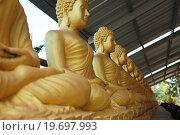 Купить «Ряд Золотых сидящих Будд», фото № 19697993, снято 4 января 2016 г. (c) Иван Михайлов / Фотобанк Лори