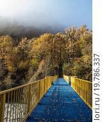 Синий мост с желтыми перилами через горную реку к деревьям  с желтой листвой. Стоковое фото, фотограф Бронислав Богачевский / Фотобанк Лори