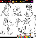 Купить «Cartoon Dog Breeds Coloring Page», иллюстрация № 19818561 (c) easy Fotostock / Фотобанк Лори
