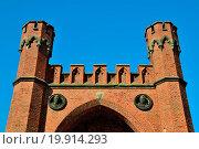 Купить «Rossgarten Gate of Koenigsberg. Kaliningrad», фото № 19914293, снято 19 февраля 2019 г. (c) easy Fotostock / Фотобанк Лори