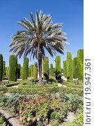 Example of Italian Garden design during spring season. Стоковое фото, фотограф Paolo Gallo Modena / easy Fotostock / Фотобанк Лори