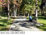 Дорожка в парке Ривьера. Сочи (2015 год). Редакционное фото, фотограф Владимир Арсентьев / Фотобанк Лори