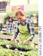 Купить «happy woman taking care of seedling in greenhouse», фото № 20086797, снято 25 февраля 2015 г. (c) Syda Productions / Фотобанк Лори