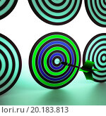 Купить «Bulls eye Target Showing Focused Accurate Precision Shot», фото № 20183813, снято 21 ноября 2012 г. (c) easy Fotostock / Фотобанк Лори