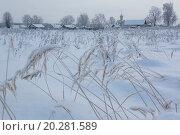 Купить «Сельский вид во время морозов в центральной части России», фото № 20281589, снято 8 января 2016 г. (c) Николай Винокуров / Фотобанк Лори