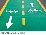 Купить «Фрагмент двухсторонней велосипедной дорожки», эксклюзивное фото № 20317853, снято 6 января 2012 г. (c) Алёшина Оксана / Фотобанк Лори
