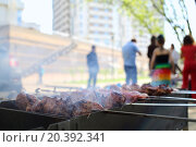 Купить «Closeup of barbecue with slices of meat on skewers in front of people», фото № 20392341, снято 1 мая 2014 г. (c) Losevsky Pavel / Фотобанк Лори
