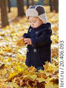 Купить «Little boy examines dried leaf standing in autumn park», фото № 20406093, снято 13 октября 2013 г. (c) Losevsky Pavel / Фотобанк Лори