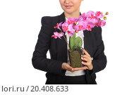 Купить «Woman in black suit holding flowerpot with artificial flower orchid», фото № 20408633, снято 7 июня 2014 г. (c) Losevsky Pavel / Фотобанк Лори