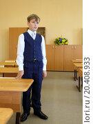 Купить «Boy stands next to desk in classroom and answer teacher question in school.», фото № 20408933, снято 17 августа 2013 г. (c) Losevsky Pavel / Фотобанк Лори