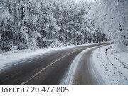 Купить «Winter Road Turns», фото № 20477805, снято 17 июня 2019 г. (c) PantherMedia / Фотобанк Лори