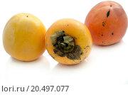 Купить «Three persimmons isolated on white background.», фото № 20497077, снято 13 ноября 2012 г. (c) easy Fotostock / Фотобанк Лори