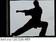 Купить «Shaolin warriors wushoo man silhouette practice martial art outdoor. Kung fu», фото № 20526489, снято 10 августа 2011 г. (c) easy Fotostock / Фотобанк Лори