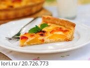 Купить «Ломтик персикового пирога на тарелке», фото № 20726773, снято 7 июня 2014 г. (c) Татьяна Ворона / Фотобанк Лори
