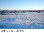 Купить «Зимний подмосковный пейзаж», эксклюзивное фото № 20728945, снято 29 декабря 2014 г. (c) Елена Коромыслова / Фотобанк Лори