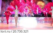 Купить «Танцовщицы в стиле кабаре выступают на сцене. Выставка Металл-Экспо 2015, Москва», видеоролик № 20730321, снято 21 января 2016 г. (c) Кекяляйнен Андрей / Фотобанк Лори