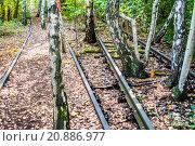 Купить «Schoeneberger Suedgelaende Nature Park», фото № 20886977, снято 22 мая 2019 г. (c) PantherMedia / Фотобанк Лори