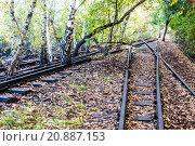 Купить «Schoeneberger Suedgelaende Nature Park», фото № 20887153, снято 22 мая 2019 г. (c) PantherMedia / Фотобанк Лори