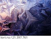 Купить «Морозный узор на зимнем окне», фото № 21397761, снято 24 января 2016 г. (c) ElenArt / Фотобанк Лори