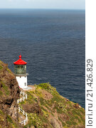 Купить «Makapu'u Lighthouse at the eastern end of the island. O'ahu. Hawaii. MakapuÊ»u Point Lighthouse is a 46-foot-tall (14 m), active United States Coast Guard...», фото № 21426829, снято 5 января 2015 г. (c) age Fotostock / Фотобанк Лори