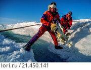 Купить «Expedition members throw husky across melt stream , harness attached to line, during descent from Greenland icecap.», фото № 21450141, снято 22 ноября 2017 г. (c) age Fotostock / Фотобанк Лори