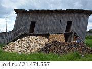 Старый покосившийся сарай. Стоковое фото, фотограф Евгения Шумилова / Фотобанк Лори